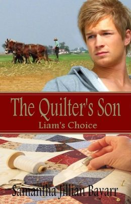 The Quilter's Son: Book One: Liam's Choice (Amish, Christian Romance)