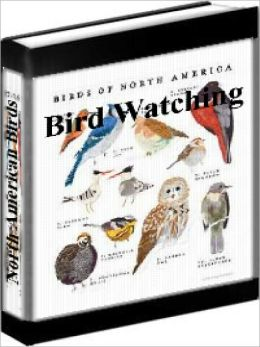Bird Watching - Common Birds Of North America