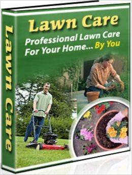 eBook about Lawn Care - Professional Lawn Care For Your Home - Making a decision like which seed you should use...