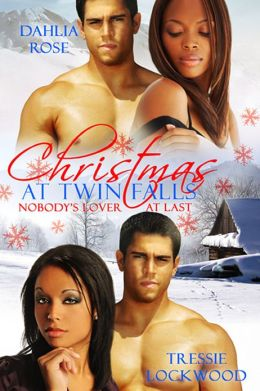 Christmas at Twin Falls [Interracial Erotic Romance]