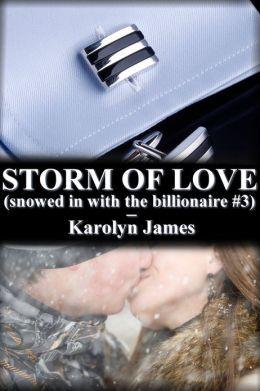 STORM OF LOVE (snowed in with the billionaire #3) (billionaire erotic romance))