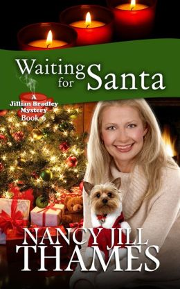 Waiting for Santa, Book 6