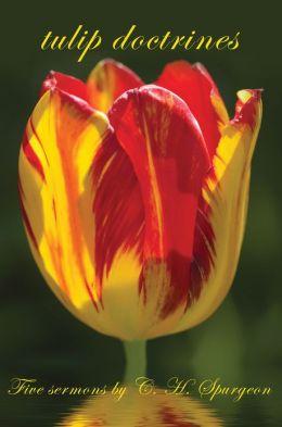 tulip doctrines
