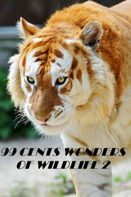 99 cent Wonders of Wildlife 2 Great for Kids and Adults Highly Recommended! animal,nature,wildlife,animals,ecology,conservation,lion,tiger,bear,mammal,elephant,leopard,cheetah,