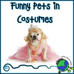 Funny Pets in Costumes
