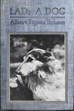 Lad: A Dog by Albert Payson Terhune