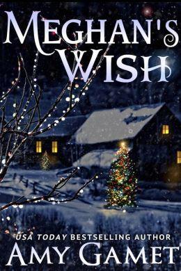 Meghan's Wish: A Novella