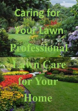 Caring for Your Lawn: Professional Lawn Care for Your Home