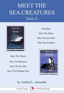 Meet The Sea Creatures Book #2