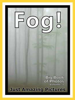 Just Fog Photos! Big Book of Photographs & Pictures of Foggy Mist, Vol. 1