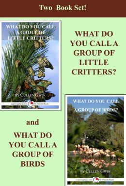 What Do You Call a Group…Two Book Set