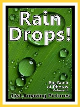Just Rain Drop Photos! Big Book of Photographs & Pictures of Water Rain Drops, Vol. 1