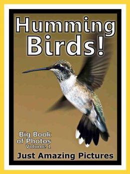 Just Humming Bird Photos! Big Book of Photographs & Pictures of Hummingbirds, Vol. 1