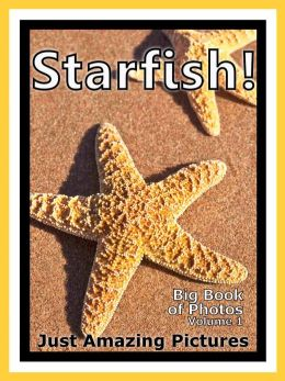 Just Starfish Photos! Big Book of Photographs & Pictures of Under Water Ocean Star Fish, Vol. 1