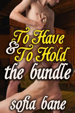 To Have and To Hold The Bundle (M/M Forced Marriage, Rough Sex)