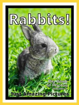 Just Bunny Rabbit Photos! Big Book of Photographs & Pictures of Bunnies & Rabbits, Vol. 1