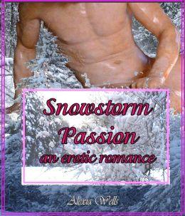 Snowstorm Passion: an Erotic Romance