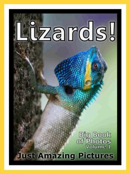 Just Lizard Reptile Photos! Big Book of Photographs & Pictures of Lizards Reptiles, Vol. 1