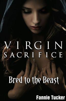 Virgin Sacrifice: Bred to the Beast (Werewolf Breeding Erotica)