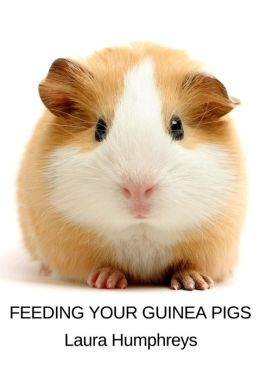 Feeding Your Guinea Pigs