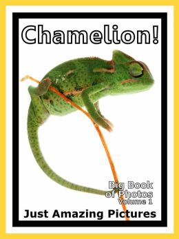 Just Chamelion Lizard Photos! Big Book of Photographs & Pictures of Chamelions Lizards, Vol. 1