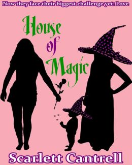 House of Magic (The Magic Baby Series, #3)