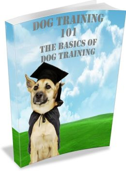 Dog Training 101: Learn The Basics Of Dog Training Fast! AAA+++