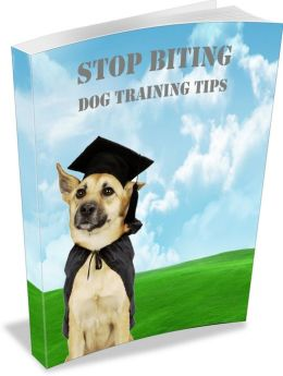 Stop Biting: Dog Training Tips! AAA+++