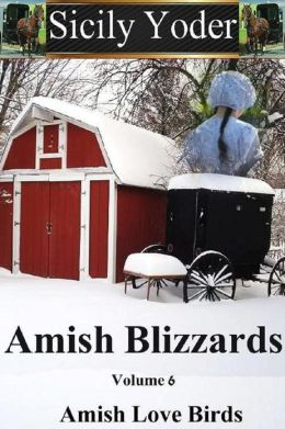 Amish Blizzards: Volume Six: Amish Love Birds (An Amish Romance, Christian Fiction Short-Story Continuing Series)