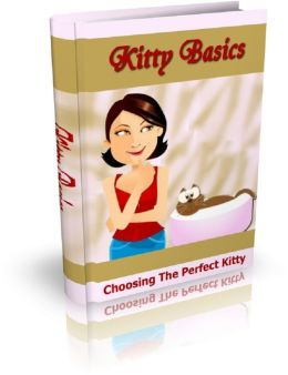 Kitty Basics: Choosing The Perfect Kitty