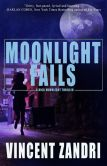Book Cover Image. Title: Moonlight Falls, Author: Vincent Zandri
