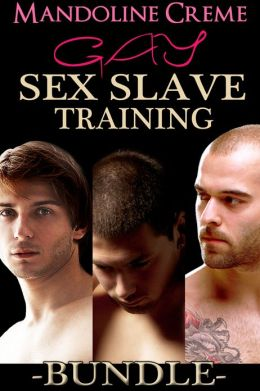 Gay Sex Slave Training Bundle (Books 1-3) (Reluctantly Dominated by Barbarians)