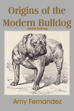 Origins of the Modern Bulldog (British Bulldog)