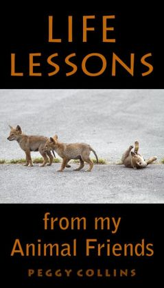 Life Lessons from My Animal Friends