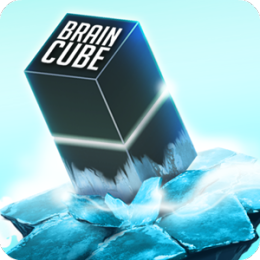 Brain Cube