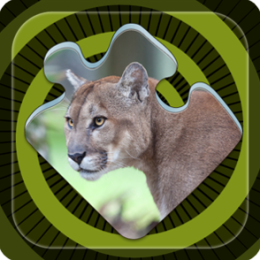 Magic Puzzles: Endangered Species