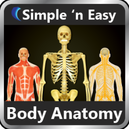 Human Body Anatomy by WAGmob