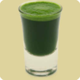 Juice Diet Recipes