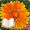 Santa Cruz Flowers + Bible Moving Wallpaper