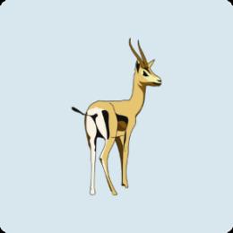 Hunting Trip Checklist