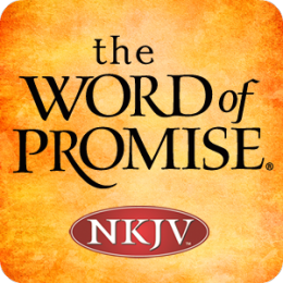 Word of Promise Audio Bible