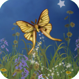 Hidden Garden: A Hidden Objects Game