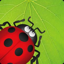 Ladybug Munch