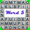 Word 5
