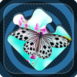 Magic Puzzles: Butterflies