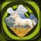 Magic Puzzles: Wild Horses