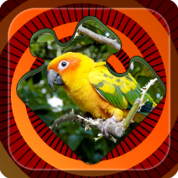 Magic Puzzles: Paradise Birds