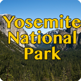 Yosemite National Park Gallery