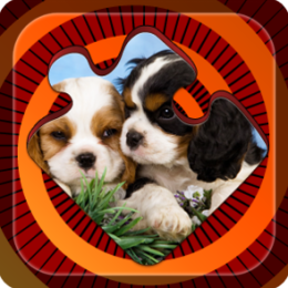 Magic Puzzles: Funny Dogs