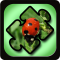 Insect Puzzles for Kids